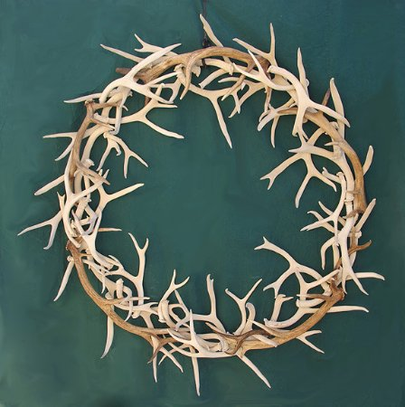 Dubois, WY: antler wreath made from brown and white mule deer antler