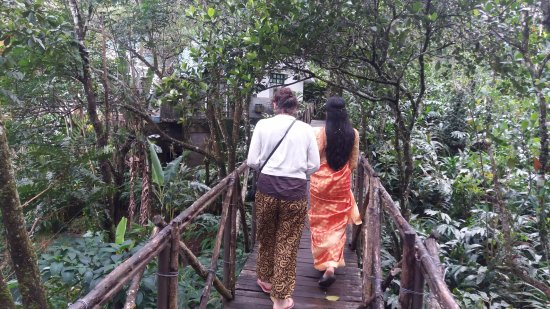 Aanavilasam Luxury Plantation House: The walk for the suite