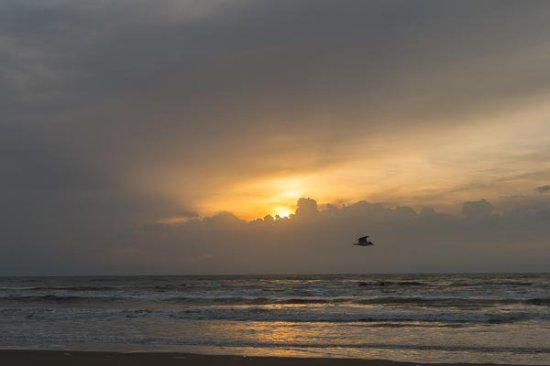 Padre Island National Seashore: Sunrises are great while camping ont the beach.