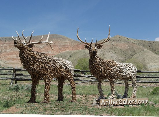 look for the elk statues along highway 26/287 west of Dubois, WY