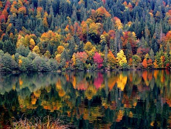 Krun, Niemcy: Herbstliche Impression