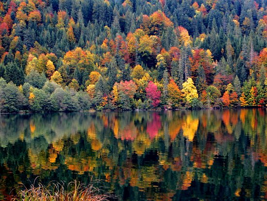 Krun, Germany: Herbstliche Impression