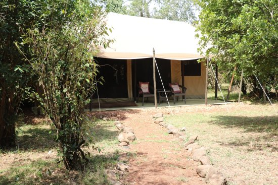 Mara Crossings Camp: photo1.jpg
