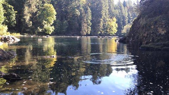 Stamp River Provincial Park : photo7.jpg