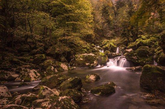 Bole, Zwitserland: photo0.jpg