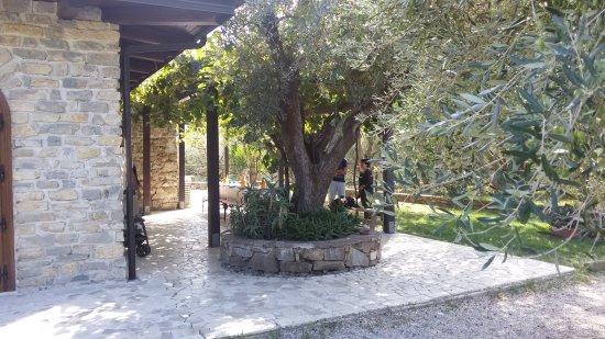 Altavilla Silentina, Italy: 20171008_134137_large.jpg