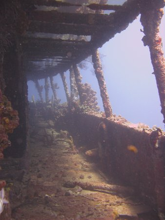 Gros Islet Quarter, Sainte-Lucie : Stunning wreck - we dived it twice