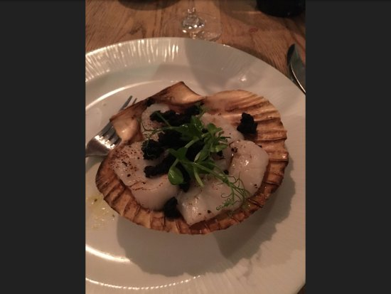 Aberaeron, UK: Starter of scallops and black pudding crumb.