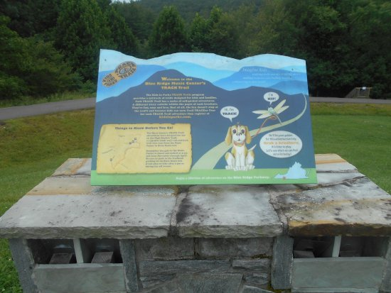 Galax, VA: Dogs are allowed on the trails