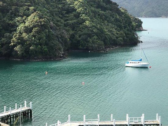 Arthurs Bay, New Zealand: photo1.jpg