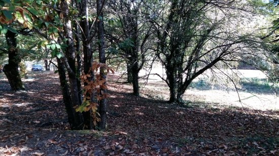 Beaumont, France : Le sentier des Arches