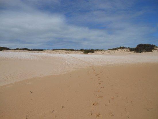 South Australia, Australia: photo3.jpg