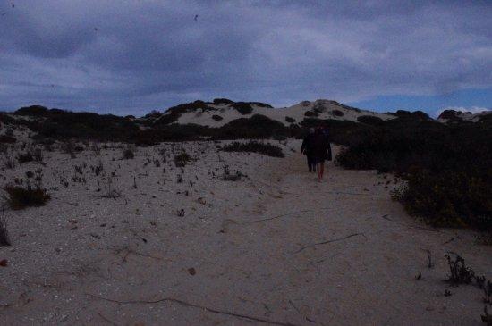 South Australia, Australia: photo6.jpg