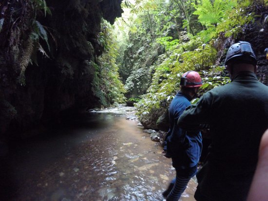 Te Kuiti, Neuseeland: Waddling through the streams. This is just the appetizer! Wait till we're in the cave!