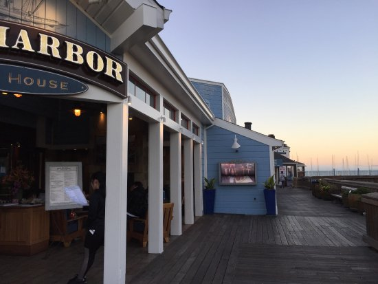 Salmon fish picture of fog harbor fish house san for Fog harbor fish house san francisco