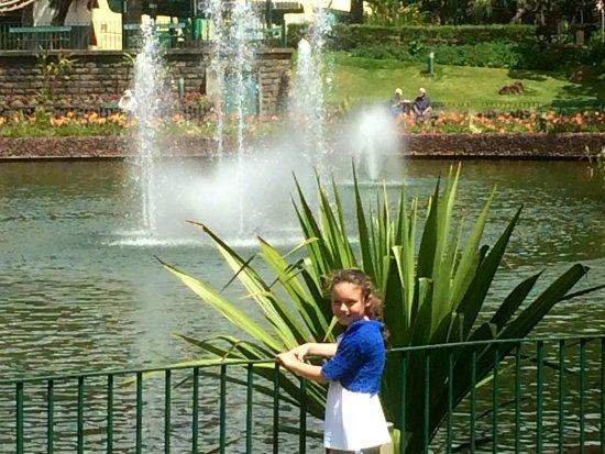 Madeira Botanical Garden : IMG_1027_large.jpg