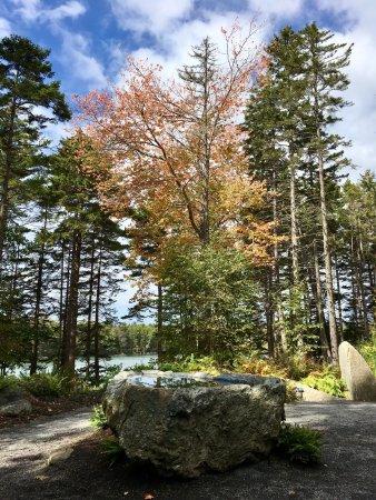 Coastal Maine Botanical Gardens Boothbay Tripadvisor