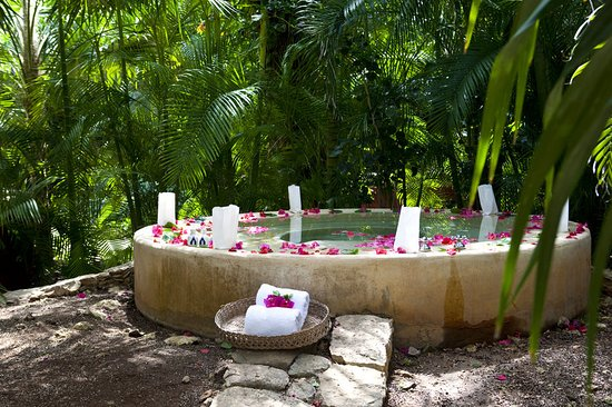 Hacienda San Jose, A Luxury Collection Hotel, San Jose: Plunge Pool
