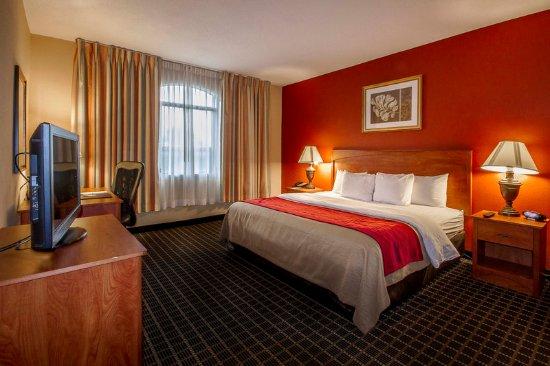 Clarion Inn  & Suites Miami Airport: Guest room