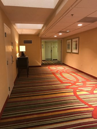 Doubletree by Hilton Hotel Columbia: photo1.jpg