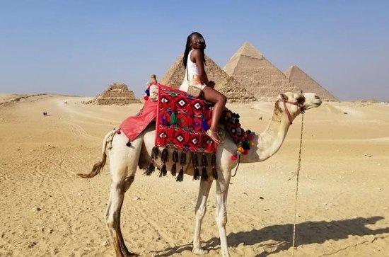 Hel dag Besök Giza Pyramider ...