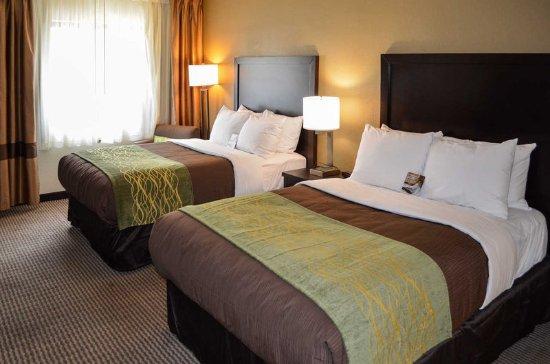 Comfort Inn Downtown Detroit : Guest Room
