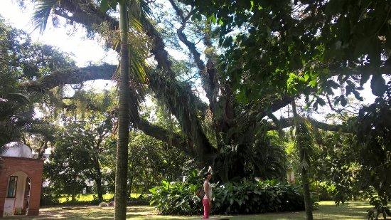 Naguanagua, Венесуэла: IMG-20170911-WA0004_large.jpg