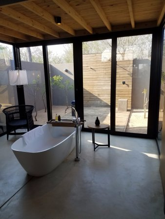 Lion Sands Ivory Lodge: indoor and outdoor shower, tub, all open and airy but very private
