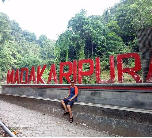 Madakaripura Waterfall: Best Spot Picture