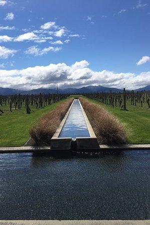 Бленхейм, Новая Зеландия: photo1.jpg