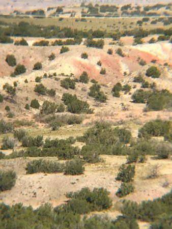 New Mexico Jeep Tours: View from one of our scenic stops.