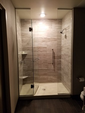Awesome Shower Stall - Picture of Embassy Suites by Hilton ...