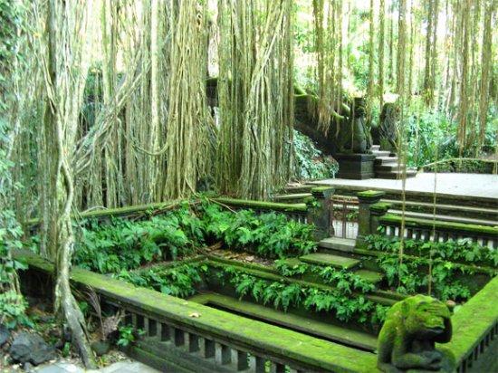 Sangeh, อินโดนีเซีย:  Monkey Forest Ubud merupakan kawasan hutan lindung dimana di dalam hutan lindung ini terdapat p