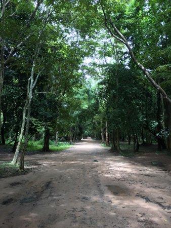 Kampong Thom, Камбоджа: photo4.jpg