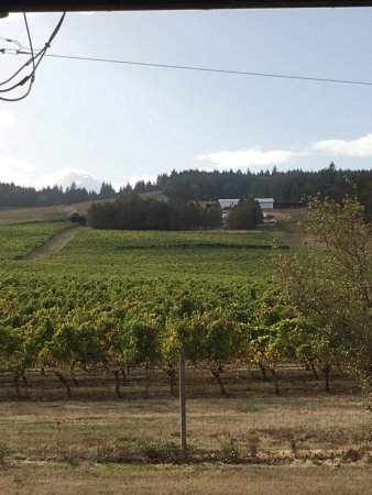 Monroe, Орегон: photo1.jpg
