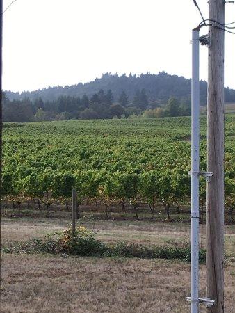 Monroe, Орегон: photo2.jpg