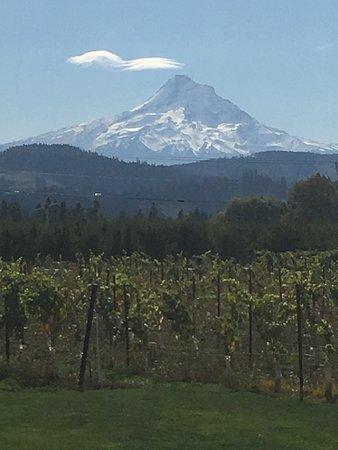 Mt. Hood Winery: photo0.jpg
