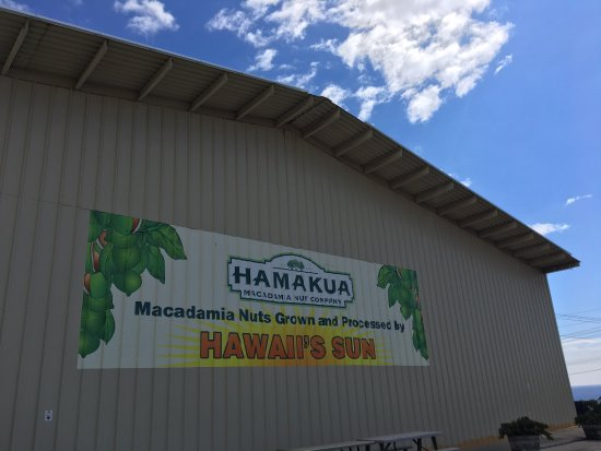 Kawaihae, Hawái: photo1.jpg