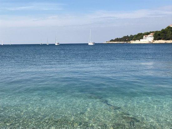 Rent a Boat Chris : Bucht im wunderschönen Kroatien