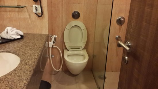 Comfort Inn Alstonia : Sitting on this WC is a tough task for large sized adults