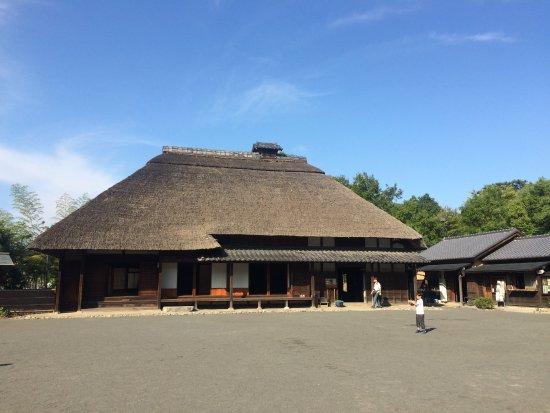 Hongo Fujiyama Park