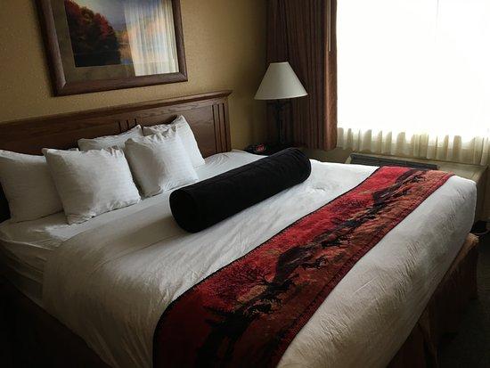 Best Western Plus Kelly Inn & Suites: My Room