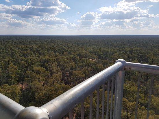 Baradine, Australia: Looking Towards Tamworth NSW