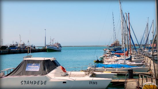 Port Elizabeth, Sudáfrica: Angola Bay