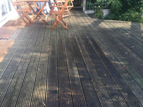 New Forest National Park Hampshire, UK: Decking