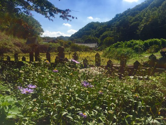 慶州JY坢休恩酒店照片