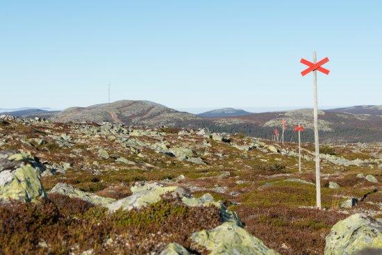 Vemdalen, Szwecja: Vandringsled sommartid