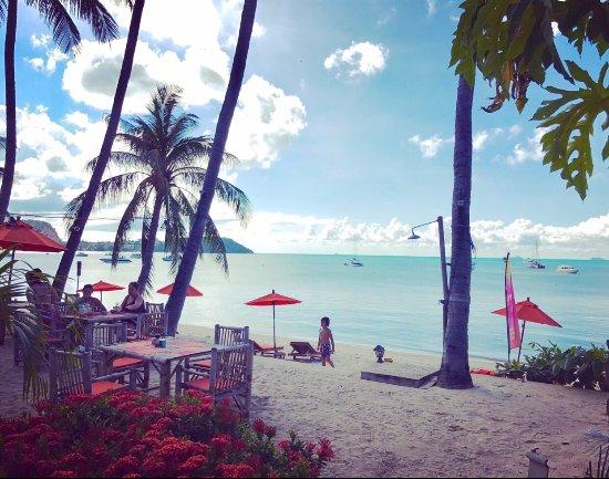 Secret Garden Beach Resort: photo0.jpg