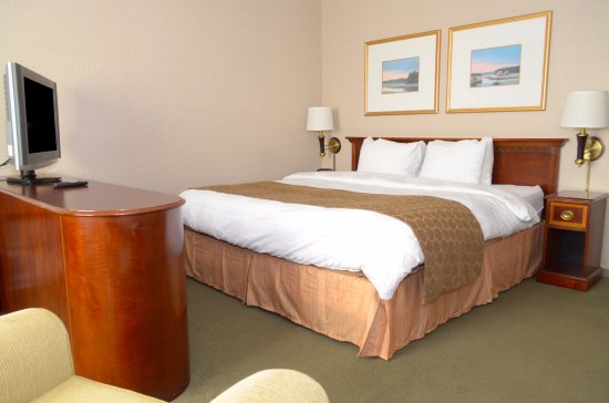 Cheap Hotel Rooms In Bloomington Mn