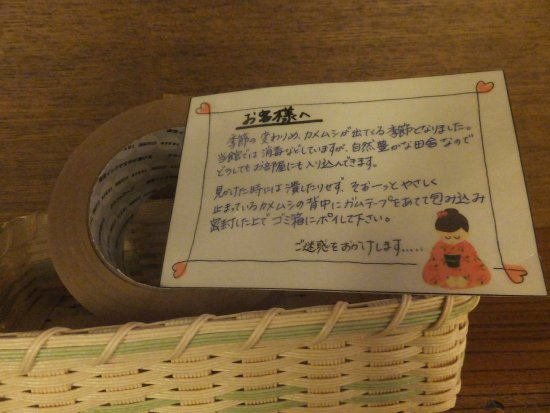 Shizukuishi-cho, Japan: カメムシは 悪いことしなかった